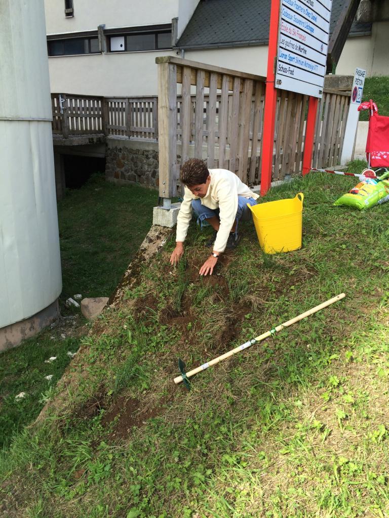 On plante des genêts  !