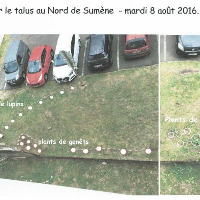 Jardinage Sumène