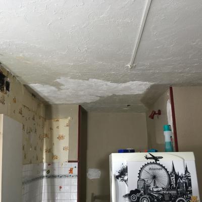 Img 9529 reprise du plafond