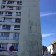mousse façade