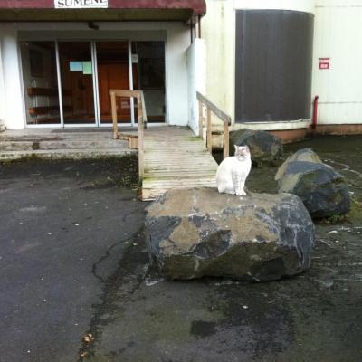 rampe et pierre :vue de l'extèrieur