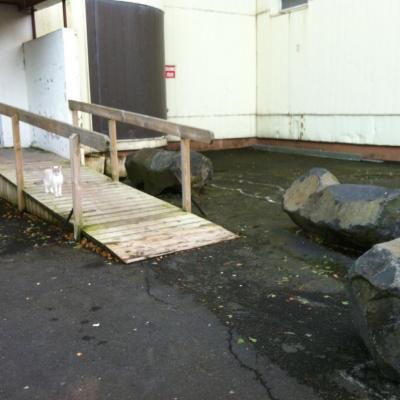 rampe et pierre : vue de côté